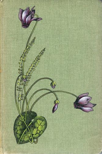 Poesie Poesiealbum Gedicht Zeichnung Blume Blumen alte deutsche Schrift Sütterlin Kurrentschrift Schönschrift