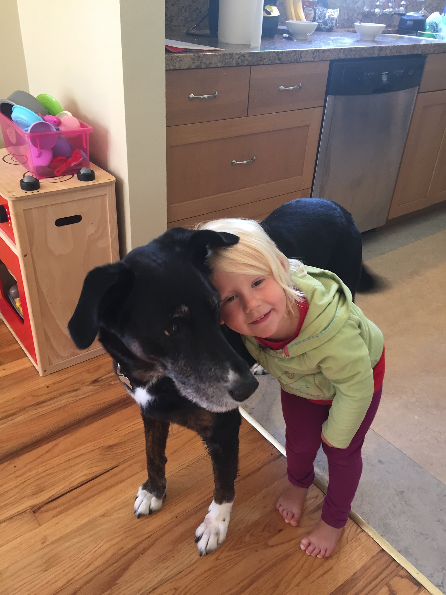 Dogs love hugs