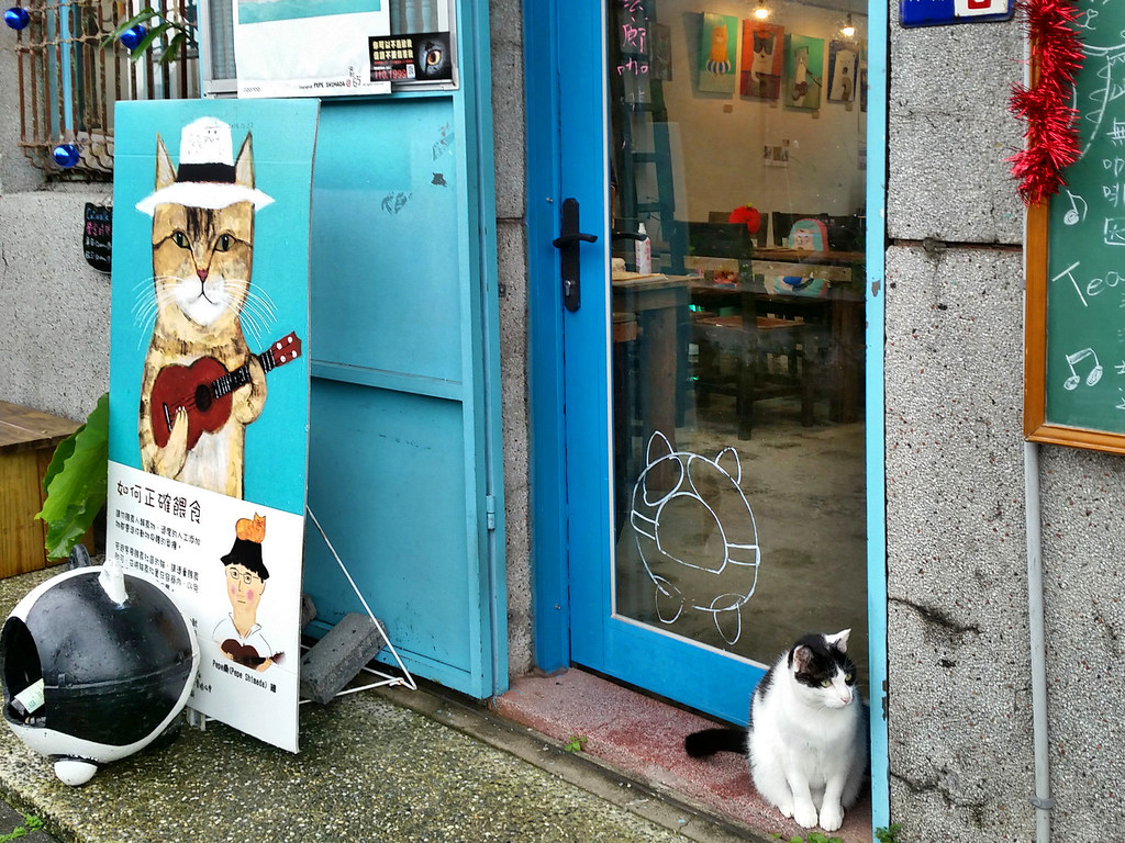 cat cafe, cat village, houtong, taipei, taiwan