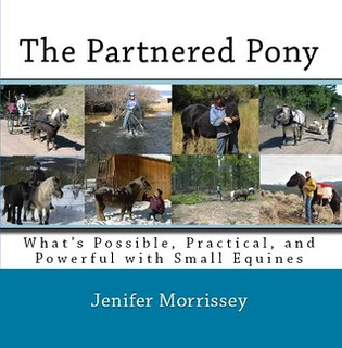 The Partnered Pony by Jenifer Morrissey