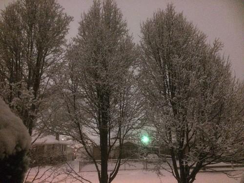 Winter Storm