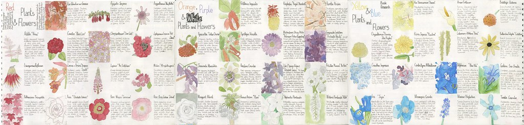 Plants&FlowerResearch