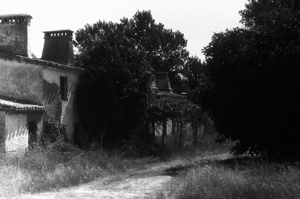 Casa en plantación II.