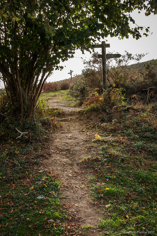 Cruces de senderos subiendo al Argandoita