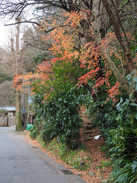 walking around Kamakura 2016.12.26 (4)