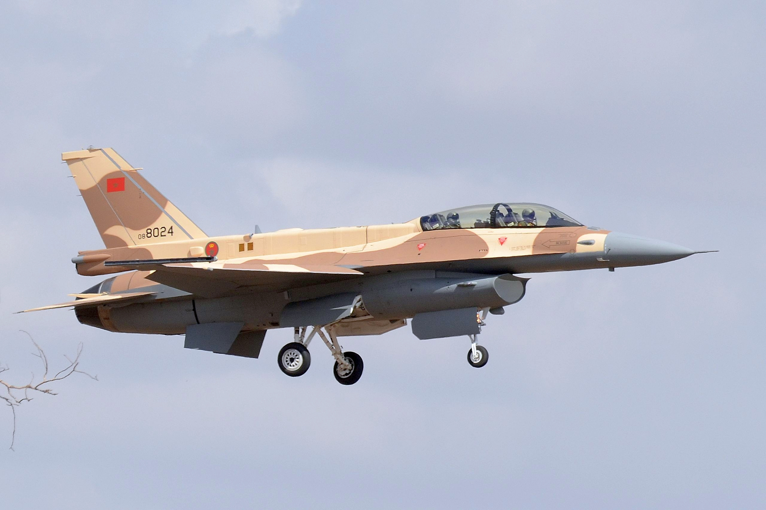 Moroccan F-16 Atlas Falcon / RMAF F16 block 52+ - Page 31 32173530400_402b4b3022_o