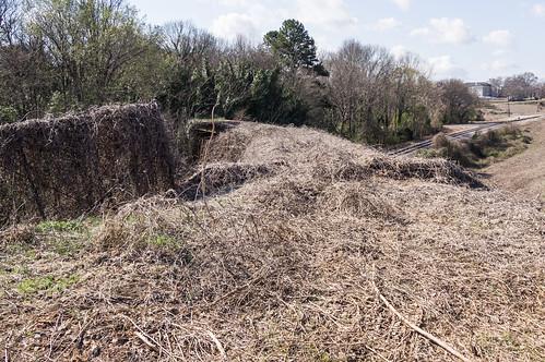 Abandoned trestle - 1