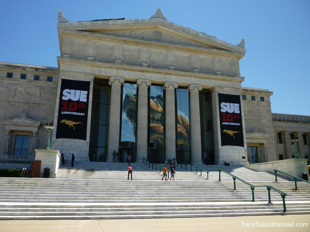 frenchieontheroad.com-field museum - chicago