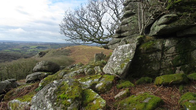 Cadworthy Tor looking to The Dewerstone