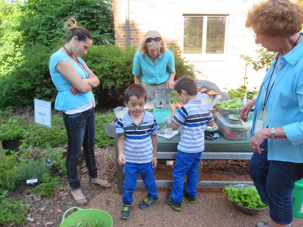 The Master Gardener Program in Milwaukee County – Master