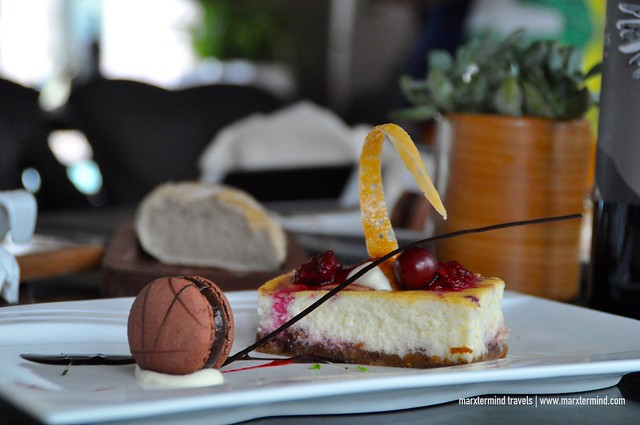 Raspberry Cheesecake Polo Bistro