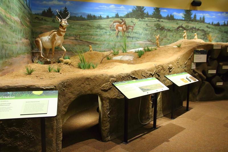 IMG_7960 Visitor Center