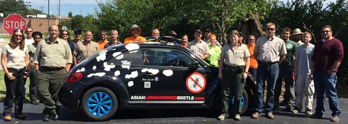 Staff from the ALB Ohio Eradication Program with the wrapped Volkswagen beetle
