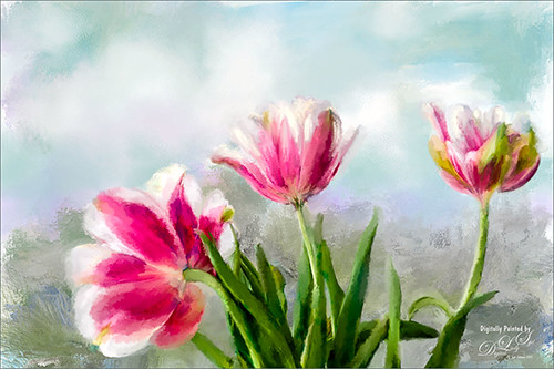 Image of white and pink parrot tulips painted