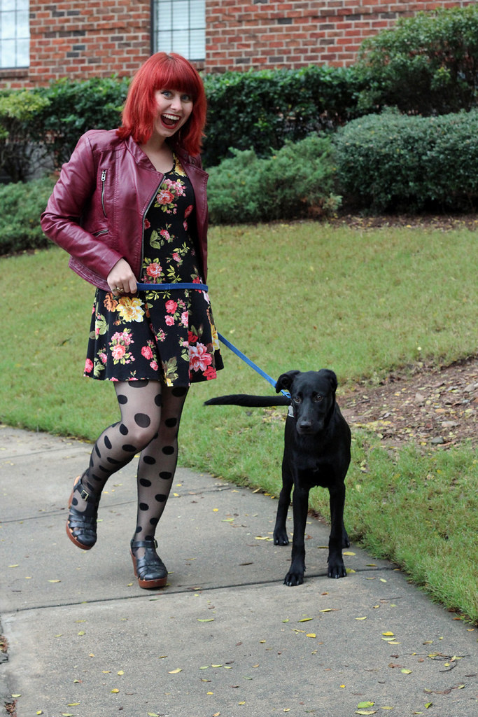 Petite Panoply: An outfit post with my black puppy Riker