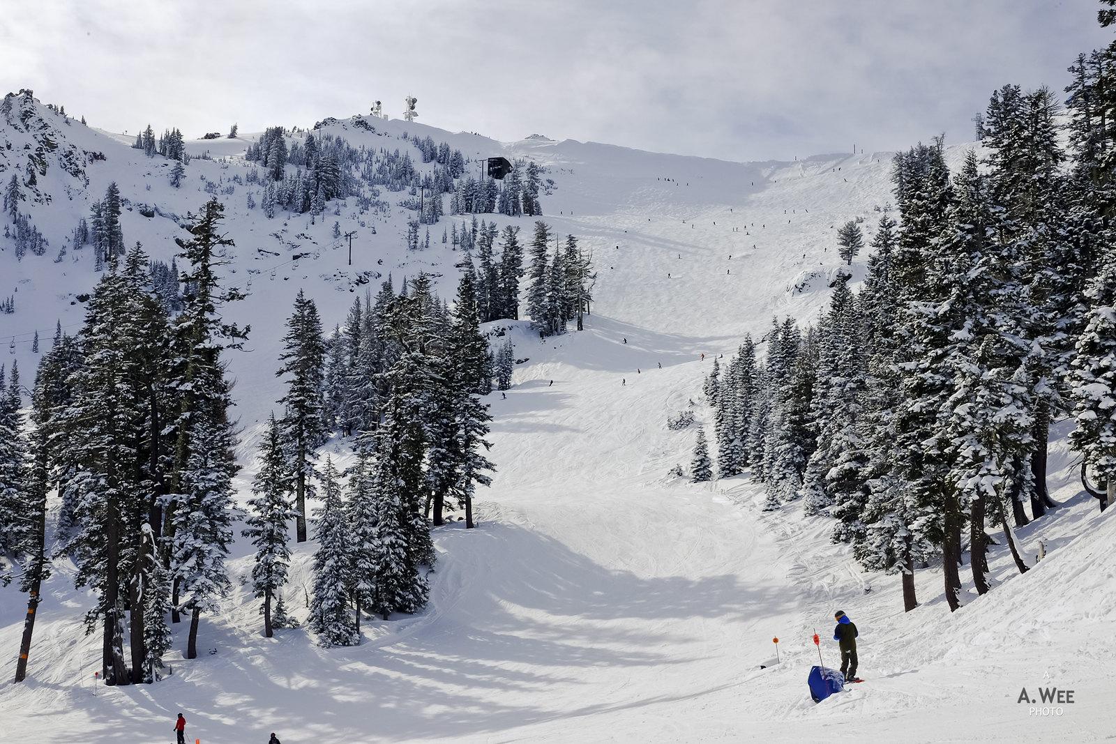 Alpine Bowl run
