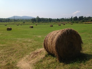 Round bales of hay in the fields | by adkfarmerdan