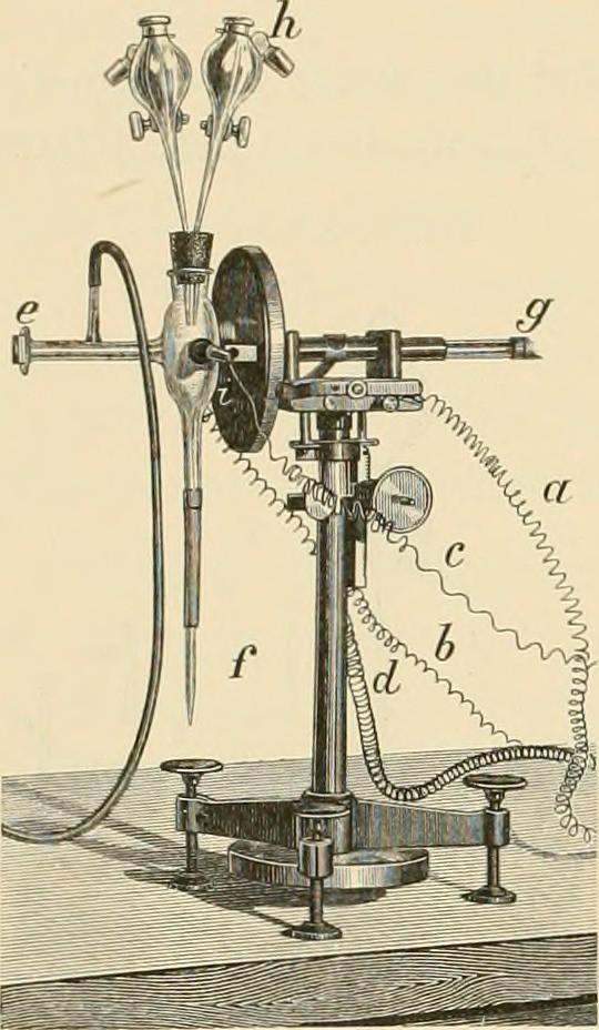 """Image from page 261 of """"Denkschriften der Kaiserlichen Akademie der Wissenschaften, Mathematisch-Naturwissenschaftliche Classe"""" (1893)"""