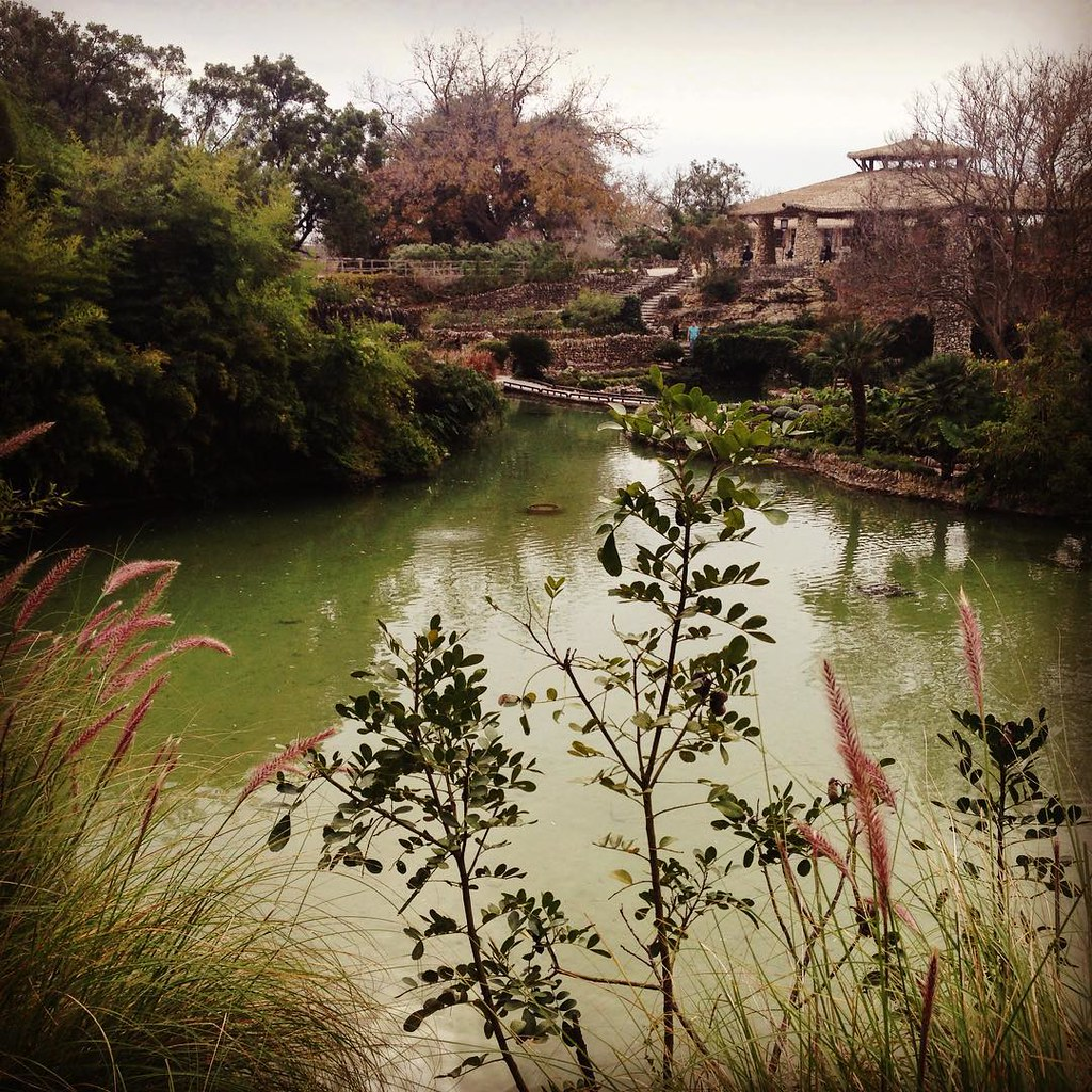 Japanese Tea Garden San Antonio Texas #sanantoniotx #japan… | Flickr