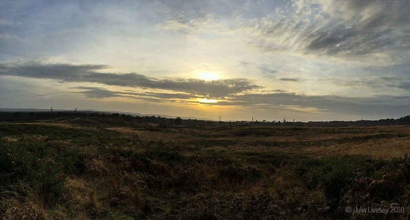 The sun sets over the heath