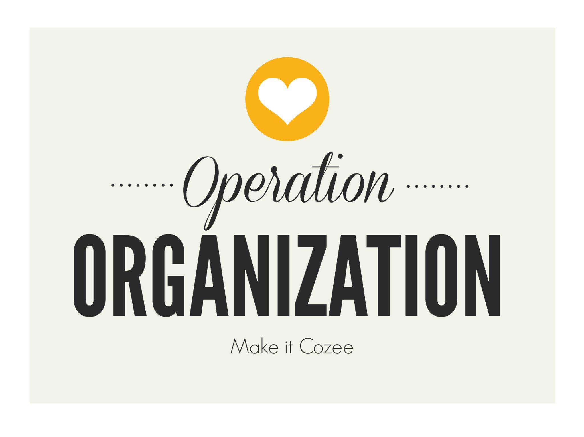 Operation Organization