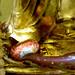 Even Enlightened Beings Love Chocolate