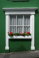 White window in green wall