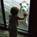 Basil At The Door