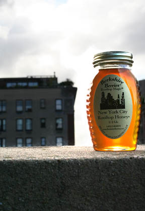 Honey honey asian nyc