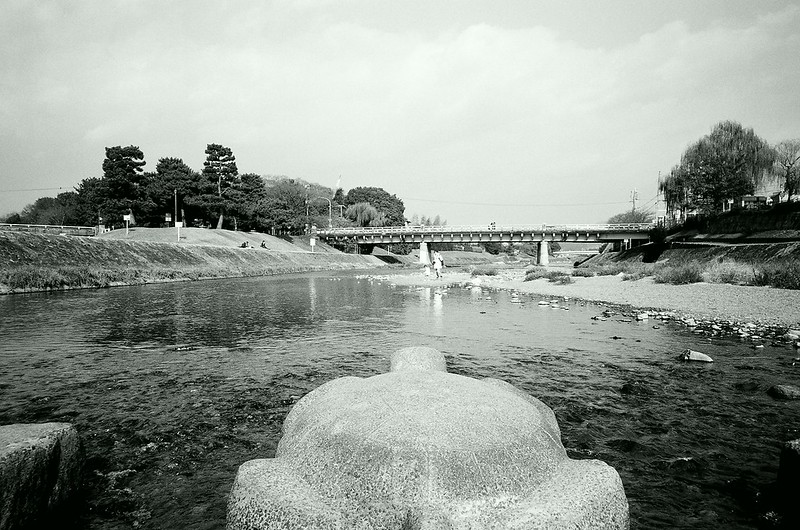 A game-like view of Kamogawa River