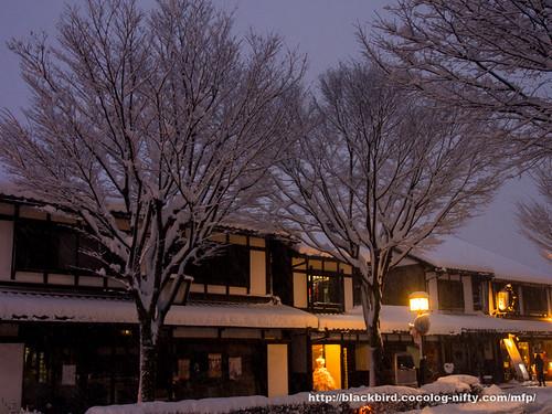Snow day 1 #13