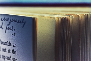 A Corner of a Dog Eared Book. | by Neal.