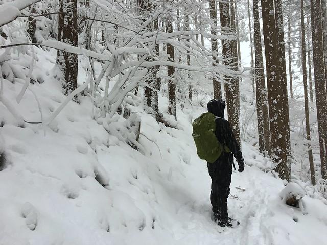 綿向山 登山道 いち