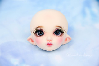 PKF RFA 2016 faceup | by AnnaZu