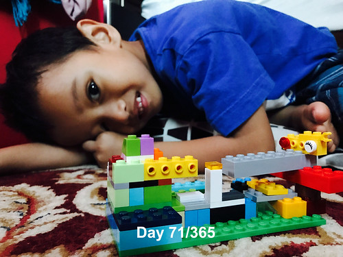 Day 71-365