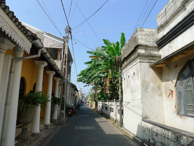 326-Galle