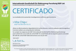 IGEF-Zertifikat-BVI-SP
