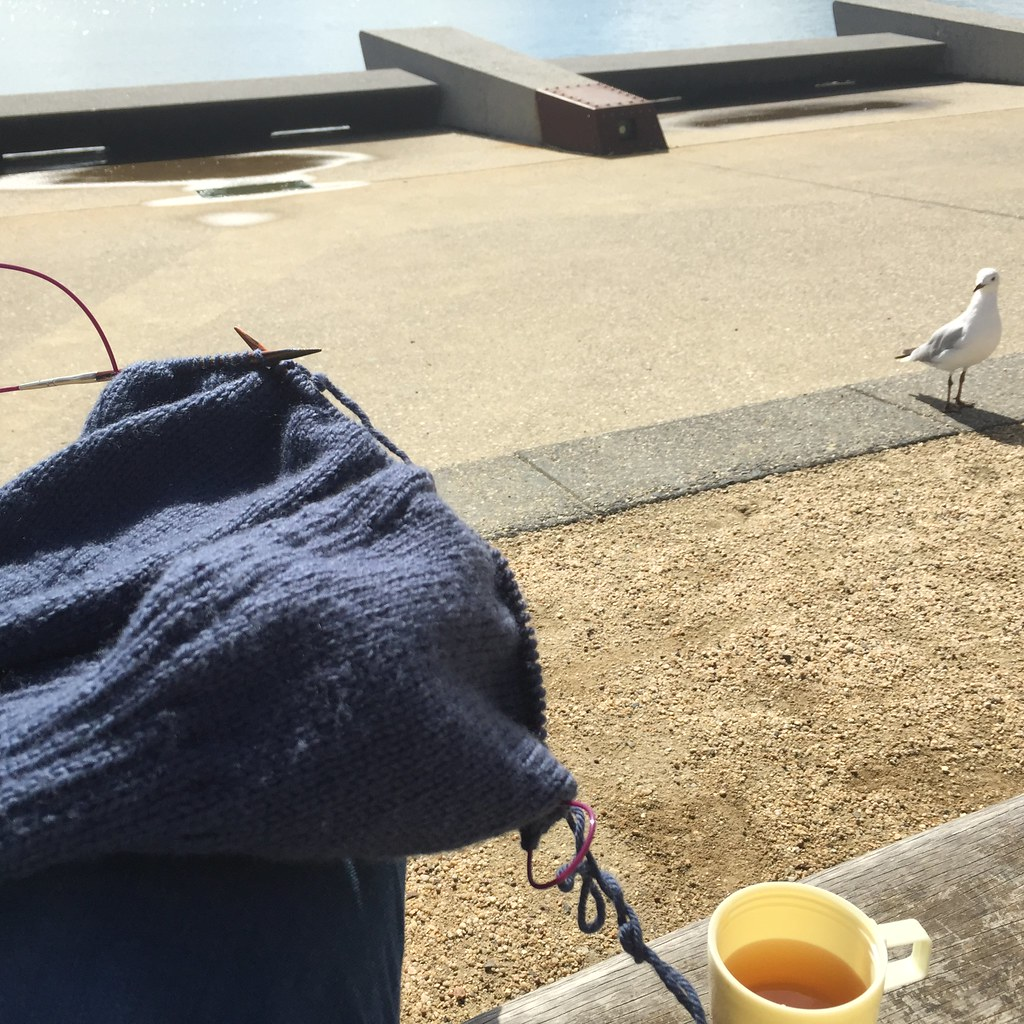 knitting and green tea, sitting on the foreshore in geelong