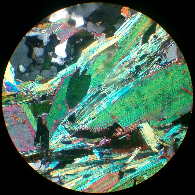 Biotite and muscovite (30 µm thin section, XPL)