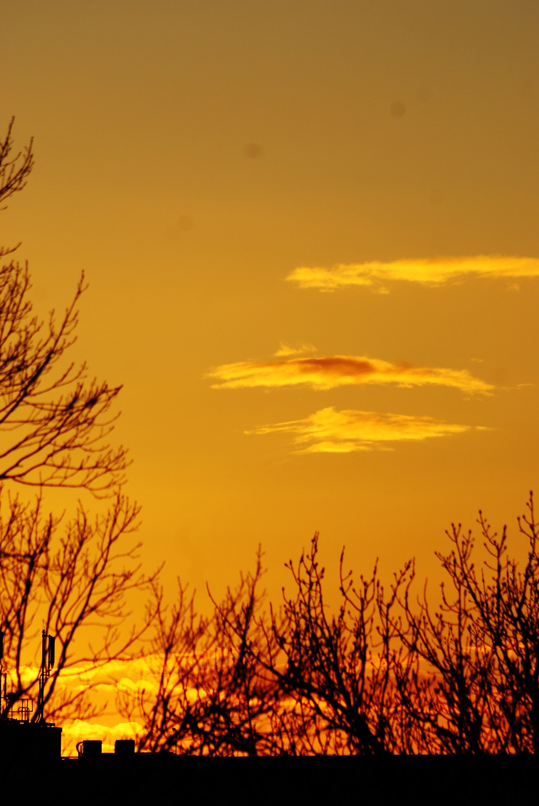 Sonnenuntergang in gelb.
