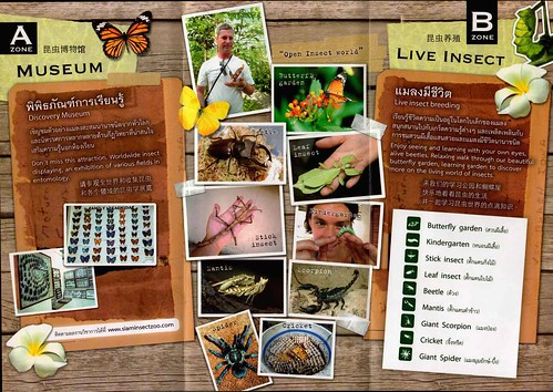 Brochure Siam Insect Zoo Chiang Mai Thailand 2