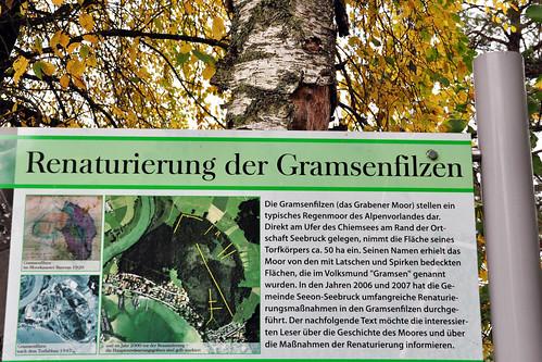 Seebruck Chiemsee Gramsenfilzen Foto Brigitte Stolle Oktober 2015
