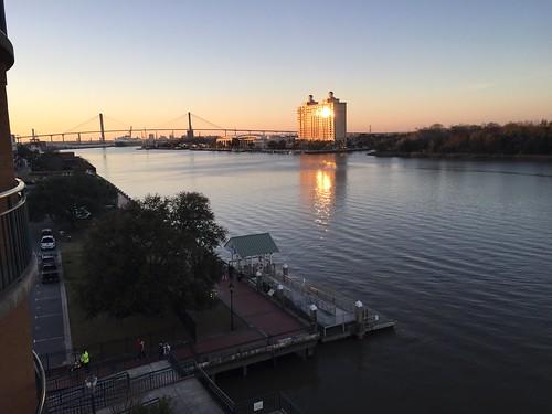 Savannah 2/17