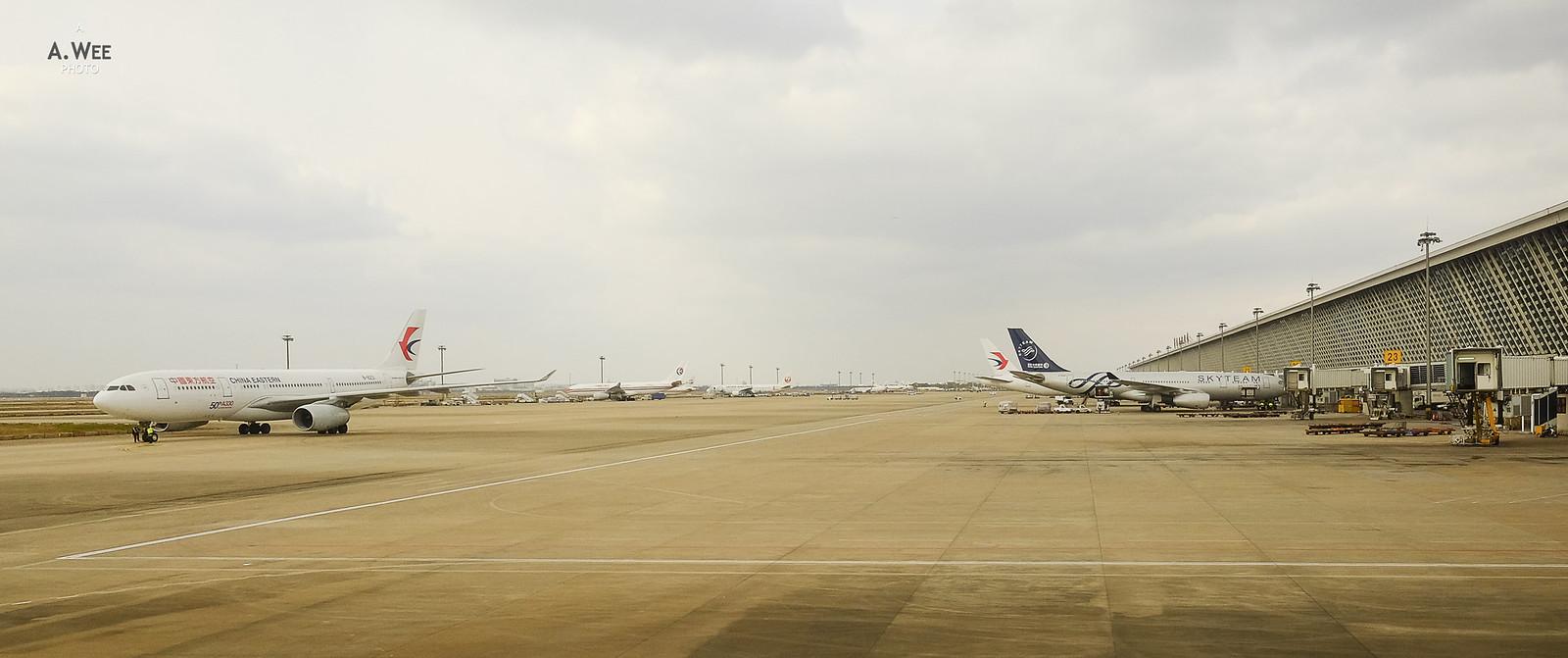 50th Airbus A330