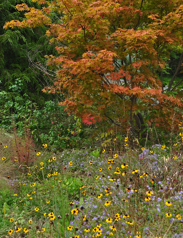 Chanticleer Gravel Garden (2)