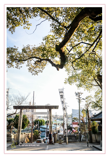 深川神社 愛知県瀬戸市 初詣 初えびす 七福神 三河万歳 和太鼓 こまいぬ座 熊手 巫女 社務所 社殿 境内