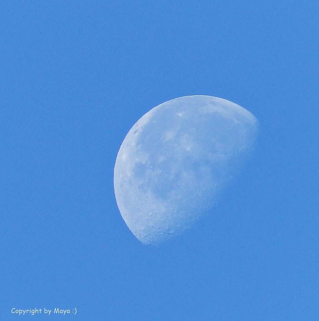 mond moon luna p1220124 002 morgenstund hat gold. Black Bedroom Furniture Sets. Home Design Ideas