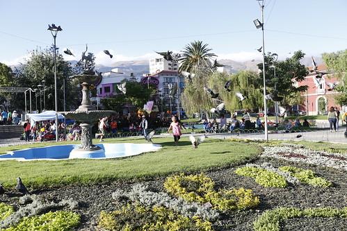 citas cochabamba gratis