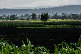 Debre Berhan, central Ethiopia | by CIAT International Center for Tropical Agriculture