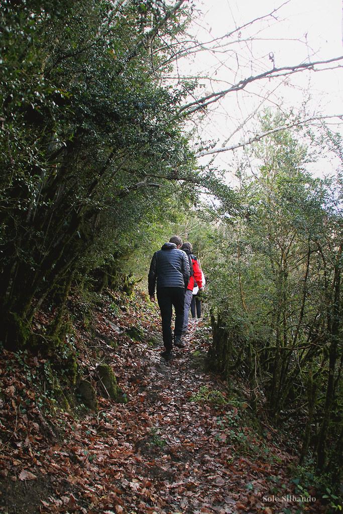 Isaba - selva de Irati
